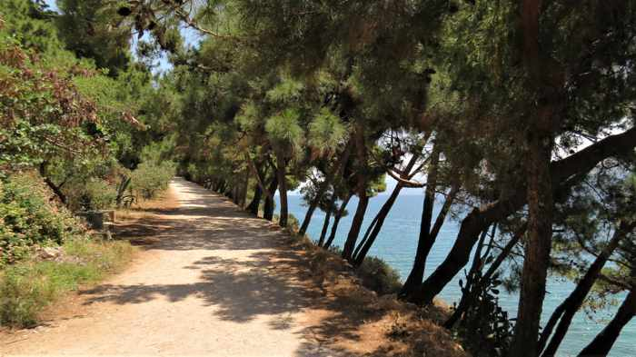 Greece, Peloponnese, Nafplio, Karathona, path, walkway, trail, Karathona beach path, trees,