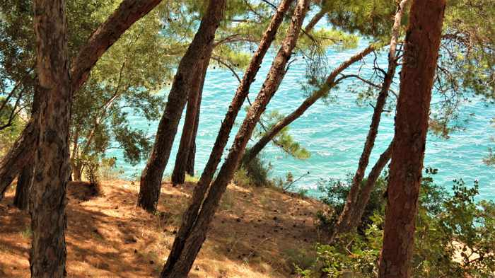 Greece, Peloponnese, Nafplio, Karathona, Karathona beach path, trail, path, walkway, trees, coast