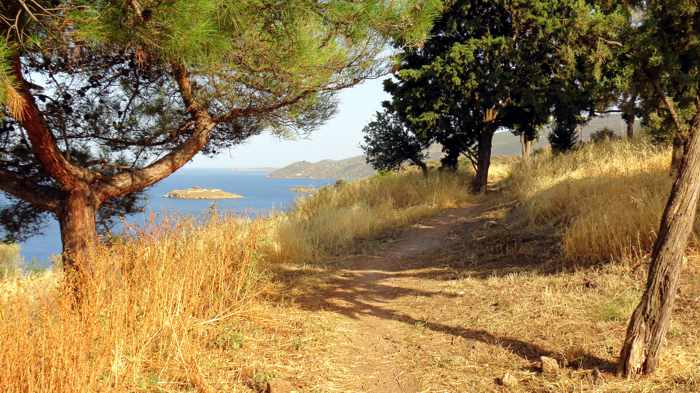 Greece, Greek island, Saronic island, Poros, Poros Greece, Poros island, path, trail, hillside,
