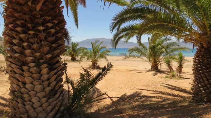 Greece, Peloponnese, Nafplio,Karathona, Karathona beach, beach, bay, seaside, shore, coast, trees, palm trees,