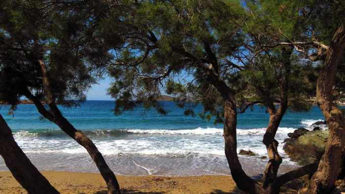 Greece, Greek Islands, Cyclades, Siros, Syros, Syros island, sea, coast, beach, Lotos, Lotos Beach, Lotos Beach Syros, beach, sea, trees