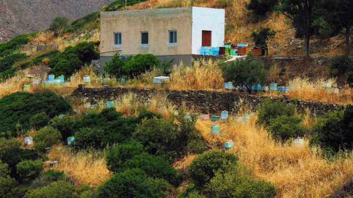 Greece, Greek Islands, Cyclades, Siros,Syros, Syros island,  hill, hillside, bee hives, beehives, apiary,