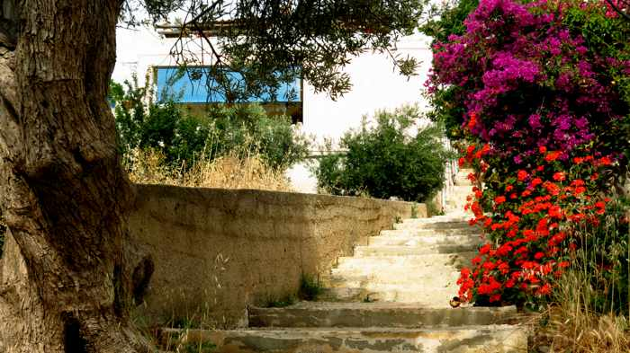 Greece, Greek Islands, Cyclades, Siros, Syros, Syros island, Kini, Kini Bay, Kini Bay Syros, village, landscape, steps, flowers, plants