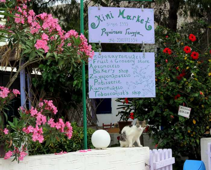 Greece, Greek islands, Cyclades, Siros, Syros, Syros island, Kini, Kini Bay, Kini Bay Syros, market, shop, store, Kini Market Kini Bay, minimarket,