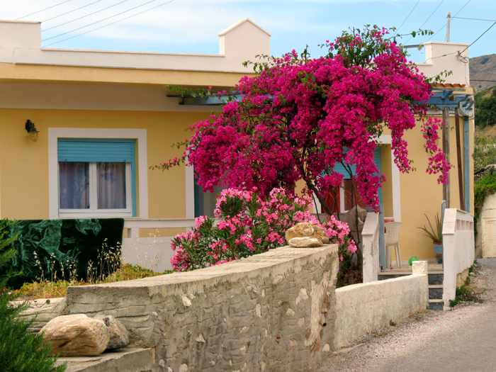 Greece, Greek Islands, Cyclades, Siros,Syros, Syros island, house, building, bougainvillea,