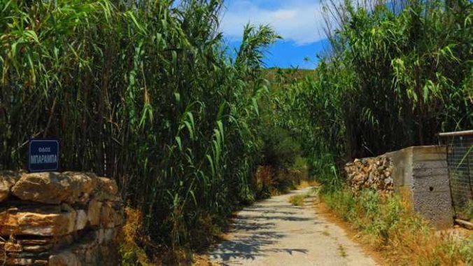 Greece, Greek islands, Cyclades, Siros,Syros, Syros island, Galissas, road, countryside