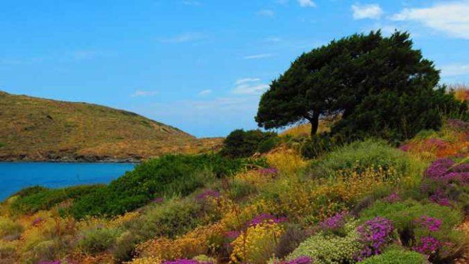 Greece, Greek islands, Cyclades, Siros, Syros,Syros island, trail, footpath, path, walking route, hiking trail, hiking, coast