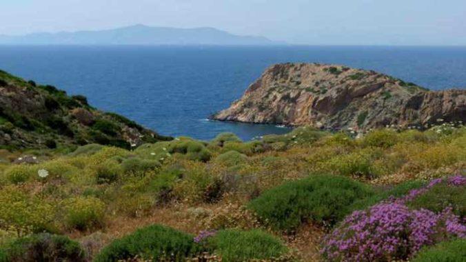 Greece, Greek islands, Cyclades, Siros, Syros,Syros island, trail, footpath, path, walking route, hiking trail, hiking, coast, sea, landscape