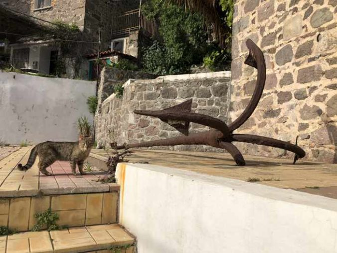 a cat and an old anchor at a house in Molyvos town on Lesvos island