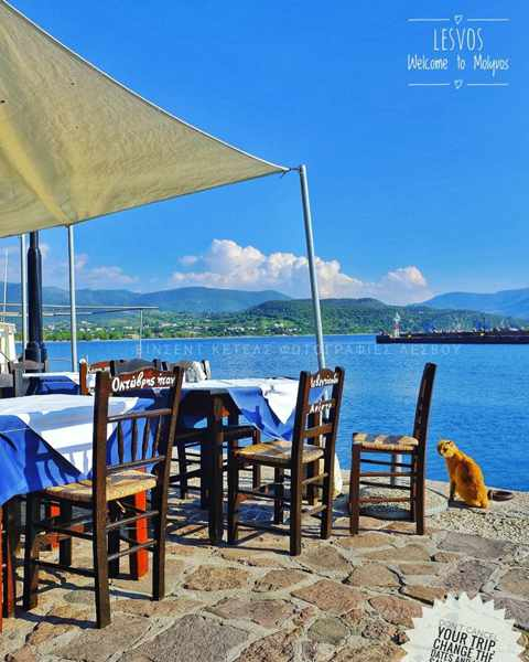 Seaside taverna in Molyvos Lesvos photo by Vkt Ketels