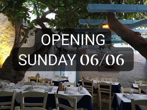 Opening announcement for Kounelas Fish Taverna on Mykonos